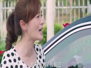 《老公们的私房钱》大结局:女人在新娘婚礼之日拦下婚车,下一秒竟主动向新娘下跪