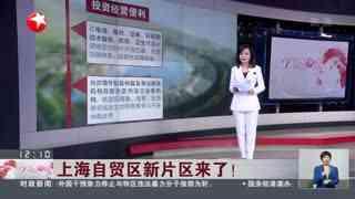 上海自贸区新片区来了!