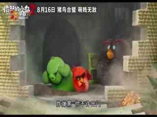 猪鸟冤家变联盟?《愤怒的小鸟2》8月上映爆笑消暑