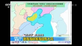 """""""利奇马""""影响环渤海及东北地区"""