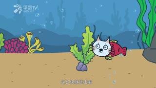 小貓湯米 第1季 第2集