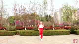 劉榮廣場舞《火了》原創附教學和背面演示