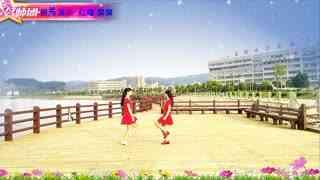 红蝶广场舞DJ《闯码头》原创32步零基础双人对跳附分解