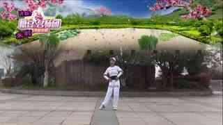 茉莉广场舞DJ《火了》32步活力健身操附教学