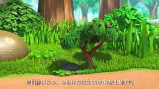 萌鸡森林小百科动物篇 第2集