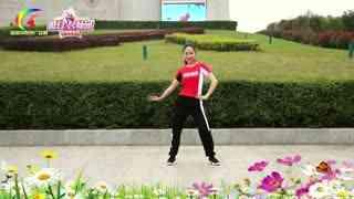 杨丽萍广场舞《喝的不是酒是感情》综合健身操