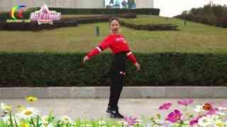 杨丽萍广场舞《又老了一岁》韵律形体舞