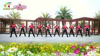 杨丽萍广场舞《对不起现在才爱上你》腰腹健身操
