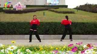 杨丽萍广场舞《寂寞放了火》恰恰小绳健身操