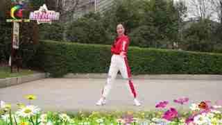 杨丽萍广场舞《改革春风吹满地》正能量现代舞
