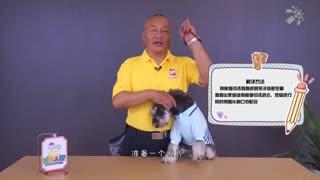 X星人说_20190927_长鼻子狗和短鼻子狗哪个更容易中暑?