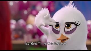《愤怒的小鸟2》速配相亲惹人恼,胖红失落离去