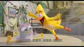 《愤怒的小鸟2》天才妹妹引自豪,胖鸟巧遇相亲对象