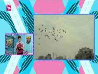 娱乐高八度_20191013_电影秀:《何以为家》