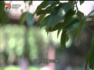 新锐杭商_20191013_专访杭州隐堂七修书院院长 高菲