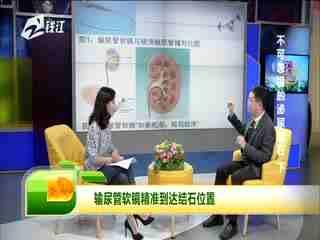 浙江名医馆_20191020_不可忽视的泌尿结石2
