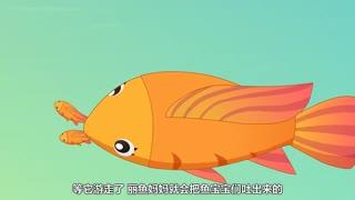 兔小贝之动物奇缘 第2集