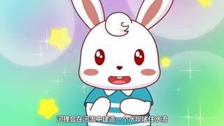 兔小贝之动物奇缘 第6集