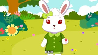 兔小贝数学课堂 第7集