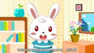 兔小贝数学课堂 第4集