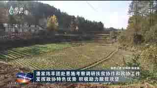 杭州新闻联播_20191122_杭州市纪委通报6起扶贫 民生领域不正之风和腐败问题典型案例
