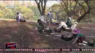 杭州新闻60分(12月05日)