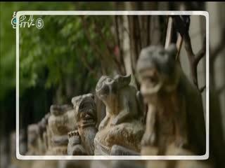 名校有约_20191208_传统文化进校园