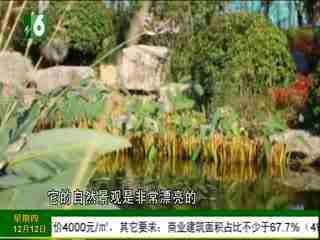 1818黄金屋_20191212_杭州城市双轴 270万起 入住融创TOP系国际社区