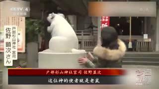 """期待繁荣!日本民众""""花式""""迎接鼠年"""