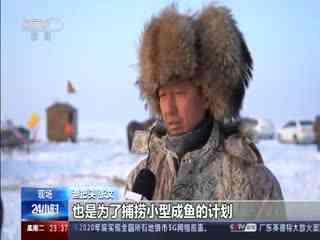 """吉林:开始大眼网捕捞 将迎""""冰湖腾鱼"""""""