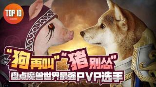 """【是大腿TOP10】106:""""狗再叫?""""""""猪别怂!""""盘点魔兽世界最强PVP选手"""
