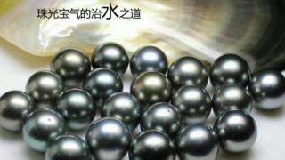 郭伟锋:珍珠宝玉的治水之道