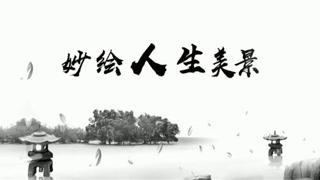 逐梦年代_20200629_苑阳:妙绘人生美景