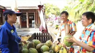 连线中国_20200722_肖志军:树上水——椰子水