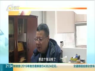 """消失的長江白鱘:曾經的""""中國淡水魚之王""""可能已經滅絕"""