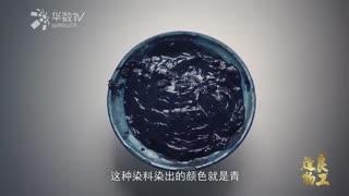 【良工造物】第四集:采蓝植物印染