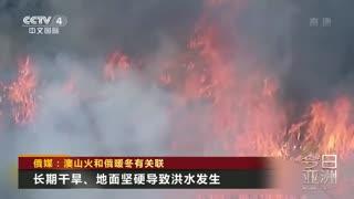 俄媒:澳山火和俄暖冬有关联