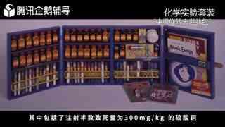 高中化学014《硬核玩具》