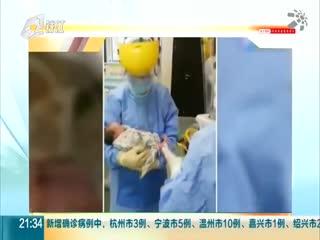 浙江省政府新闻办新闻发布会介绍新型冠状病毒感染的肺炎疫情防控工作
