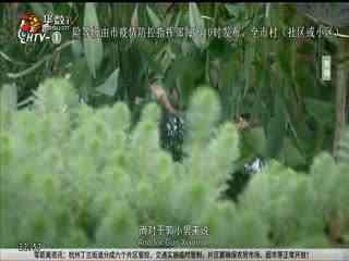 房产零距离_20200220_小镇里的中国