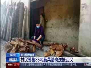 深山里的情谊:村民筹集85吨蔬菜腊肉送抵武汉
