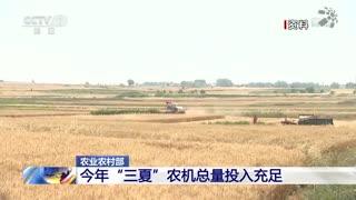 农业农村部:全国小麦收获进度约两成 跨区机收展开