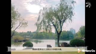 2020浙江理工大学服装学院毕业设计展-金银志
