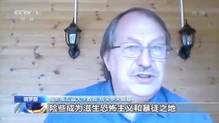 俄专家:国安法为香港发展创造稳定环境