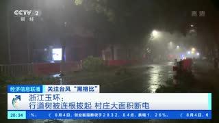 """关注台风""""黑格比"""" 浙江玉环:行道树被连根拔起 村庄大面积断电"""