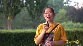 《廉政中国》之忆峥嵘岁月