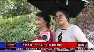 杭州新闻60分_20200814_杭州新闻60分(08月14日)