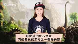 爱丽讲恐龙故事 第5集