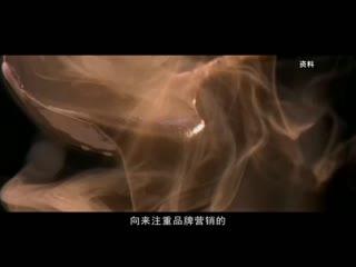 中国品牌档案_20200610_黑芝麻传奇