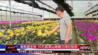 杭州新闻60分_20200911_杭州新闻60分(09月11日)
